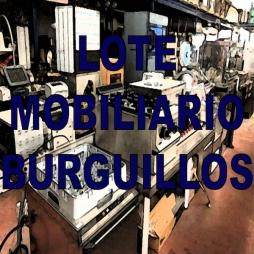 LOTE MOBILIARIO - BURGUILLOS