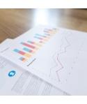 INVERSION FINANCIERA - ACCIONES - BURGUILLOS